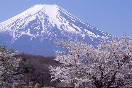 日本本州全景6日游>青岛出发,乐享东瀛,富士山雪景