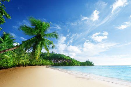 海口进出4晚5日B线游 海の蓝围绕海岸,住三晚海边酒店 自助餐